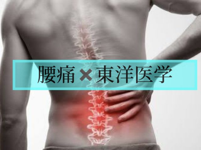 東洋医学的に診た腰痛【福岡市中央区 赤坂けやき通り鍼灸・整骨院】